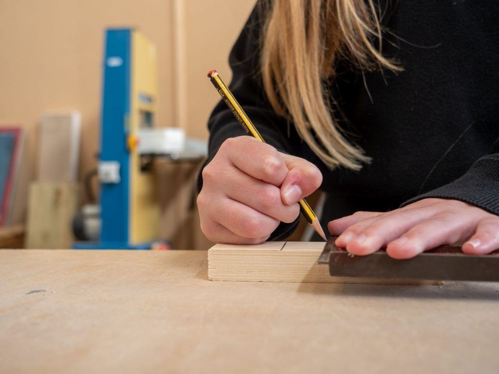 Education and Professional Development in Practical Learning